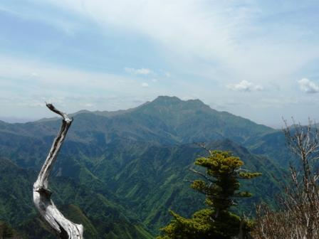 瓶ヶ森林道からの眺望 石鎚山