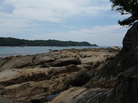 竜串海岸 1