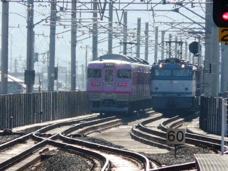 113系電車 & 貨物列車 (EF65)