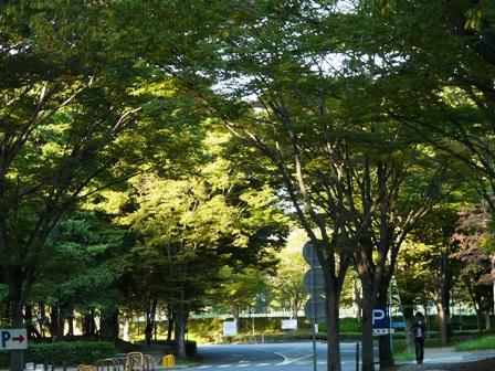 筑波大学 4