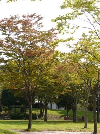 竹園公園 1
