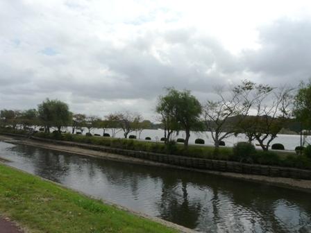 千波湖と桜川