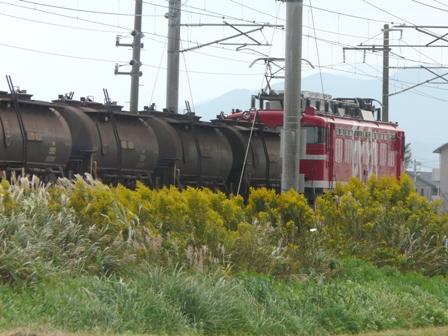 貨物列車 EF81-95 安中貨物 3