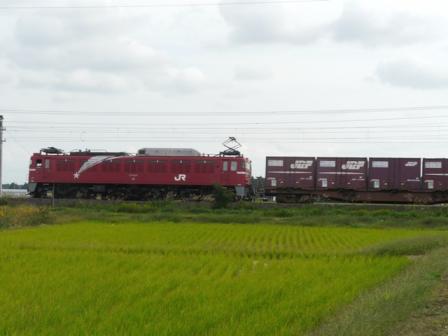 貨物列車 EF81 (1)