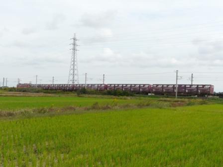 貨物列車 EF81 (2)