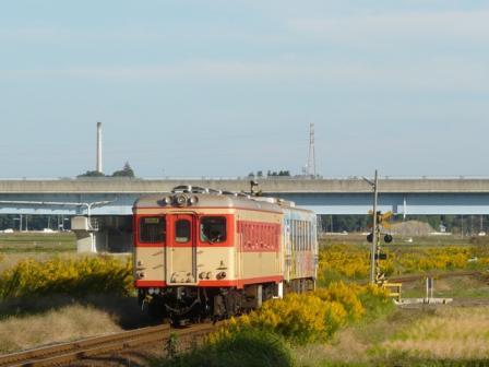 ひたちなか海浜鉄道 キハ2005&キハ37100-03 中根駅付近