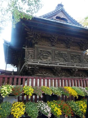 笠間稲荷神社 菊まつり 2