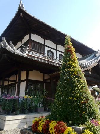 笠間稲荷神社 菊まつり 7