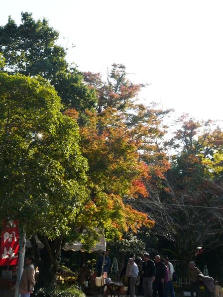 笠間稲荷神社 紅葉 1