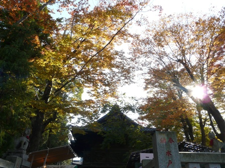 笠間稲荷神社 紅葉 2