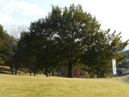 笠間芸術の森公園 2
