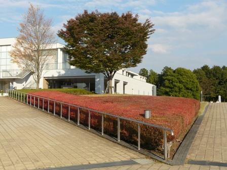 笠間芸術の森公園 3