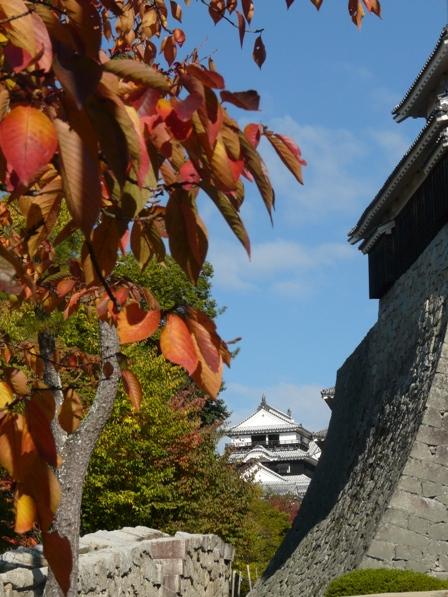 松山城 紅葉 2