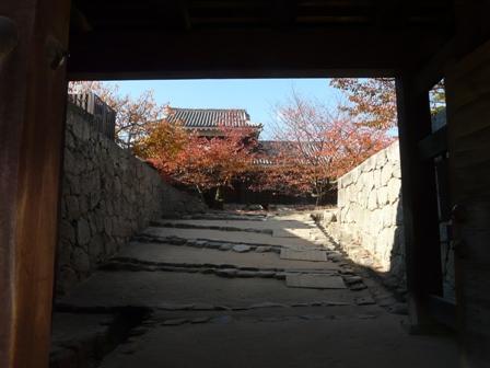 松山城 紅葉 5