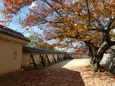松山城 紅葉 9