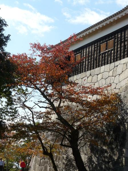 松山城 紅葉 11