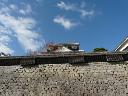 松山城 紅葉 12