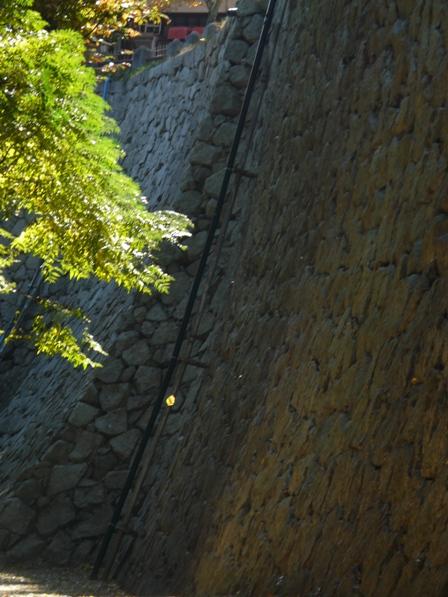 松山城 紅葉 15