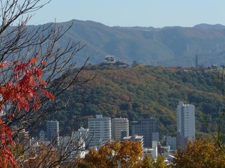 松山総合公園から 1