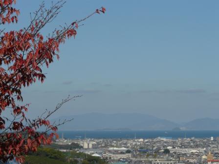 松山総合公園から 6