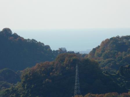 湧ヶ渕公園 9