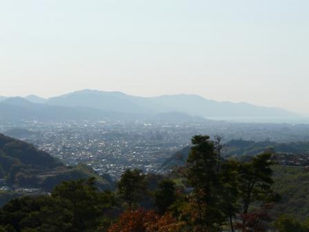 湧ヶ渕公園 8