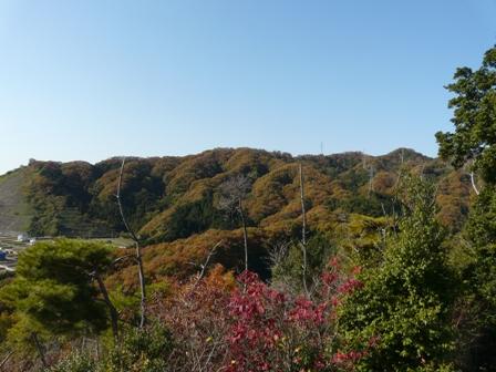 湧ヶ渕公園 10