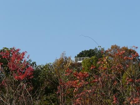 湧ヶ渕公園 7