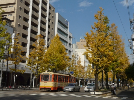 花園町 銀杏並木