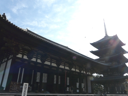 興福寺 東金堂と五重塔
