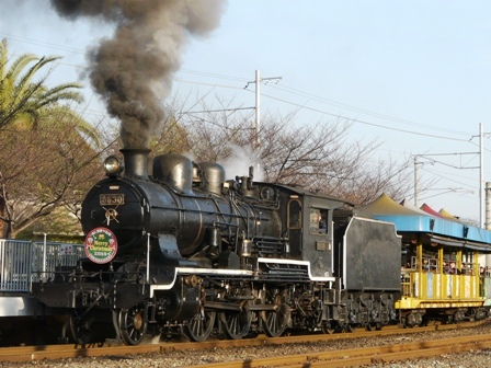 梅小路蒸気機関車館 SLスチーム号 4
