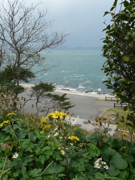 大角海浜公園 3