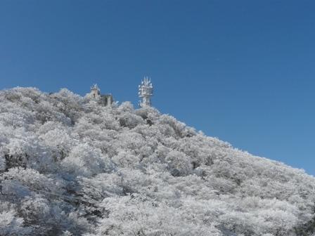 筑波山 御幸ヶ原 2