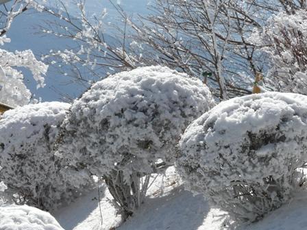 筑波山ケーブルカー 山頂駅から 1
