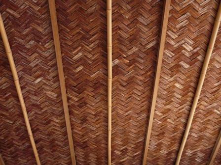 好文亭 13  東塗縁の天井