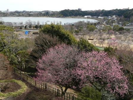 好文亭 19  楽寿楼からの眺め
