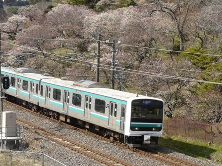 E501系