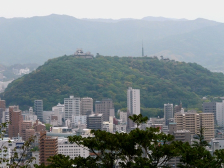 松山総合公園から見た松山城