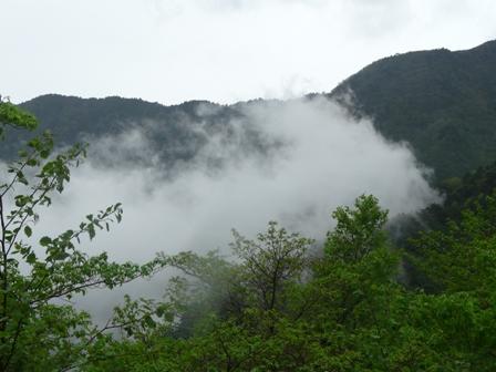 雲のある景色 1