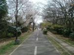 多摩湖自転車道2