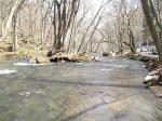奥入瀬渓流中流