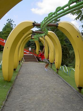 光、バナナ