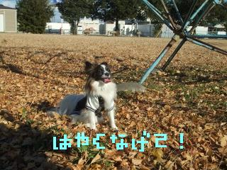 2DSCF0743.jpg