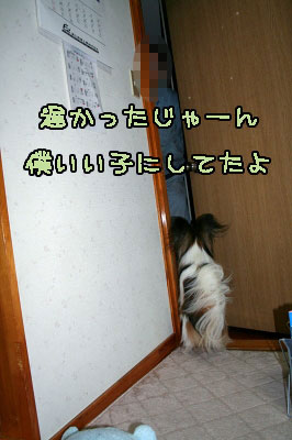 3IMG_0272.jpg