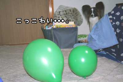 3IMG_0896.jpg
