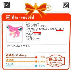 20051203195207.jpg