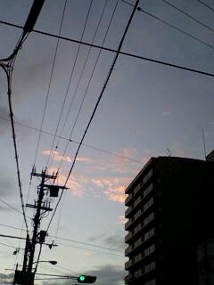 PA0_0512.jpg