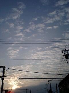 PA0_0539.jpg