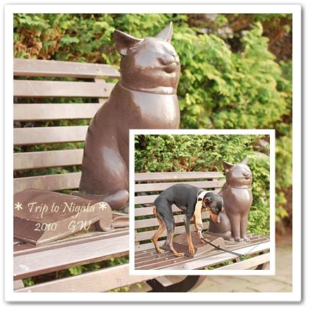 cats20100505-1.jpg