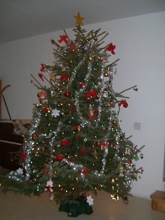 tree12162008